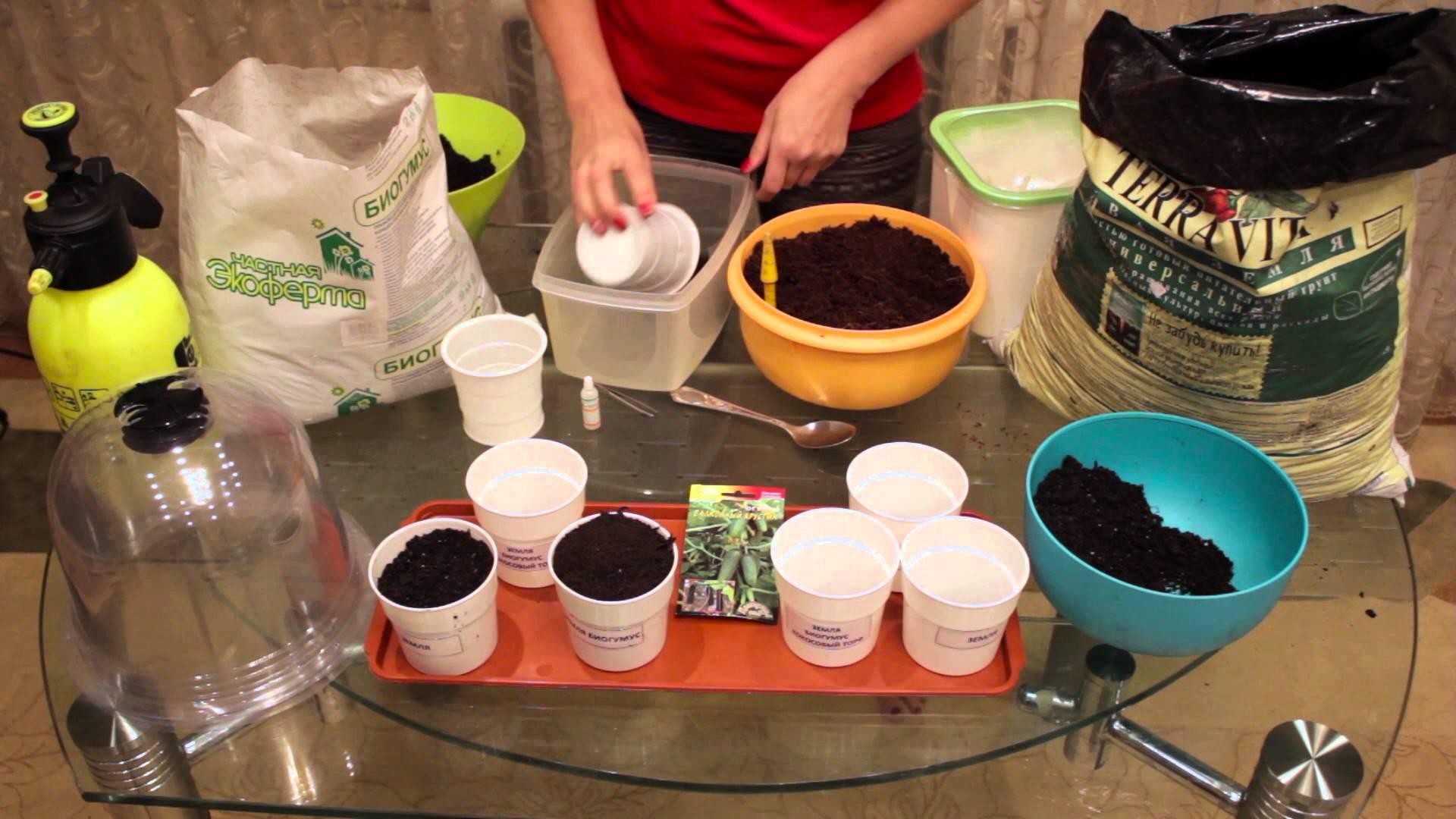 Питательные грунты для рассады основа урожая - Сады