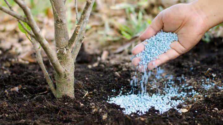 фосфорные удобрения это какие названия