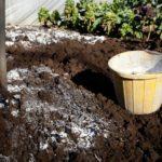 удобрения для кислой почвы