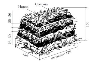 приготовление компоста для шампиньонов в домашних условиях
