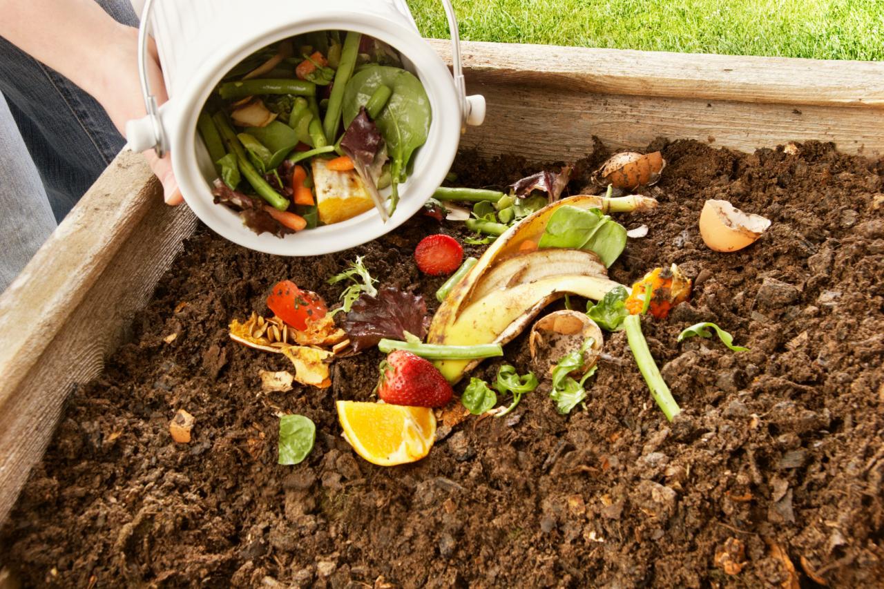 микроудобрения для подкормки растений