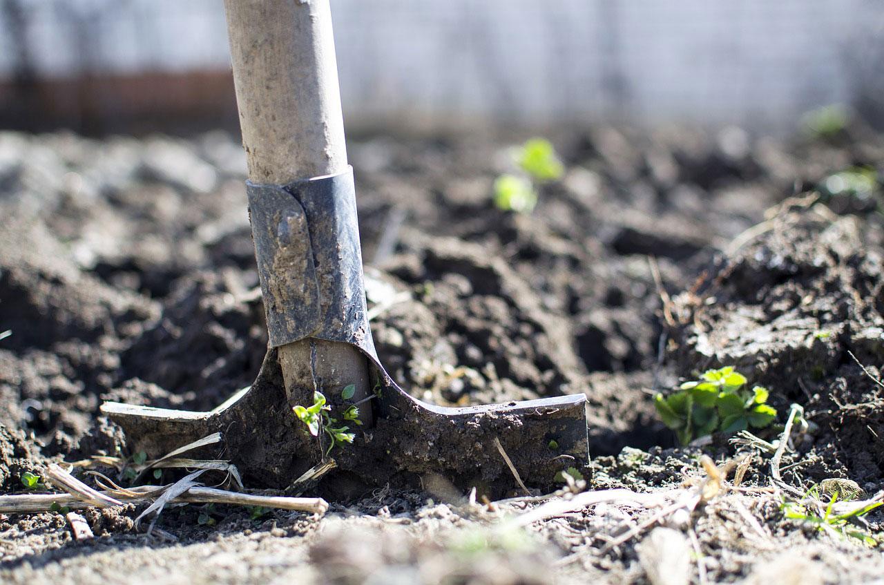сульфат магния инструкция по применению удобрение