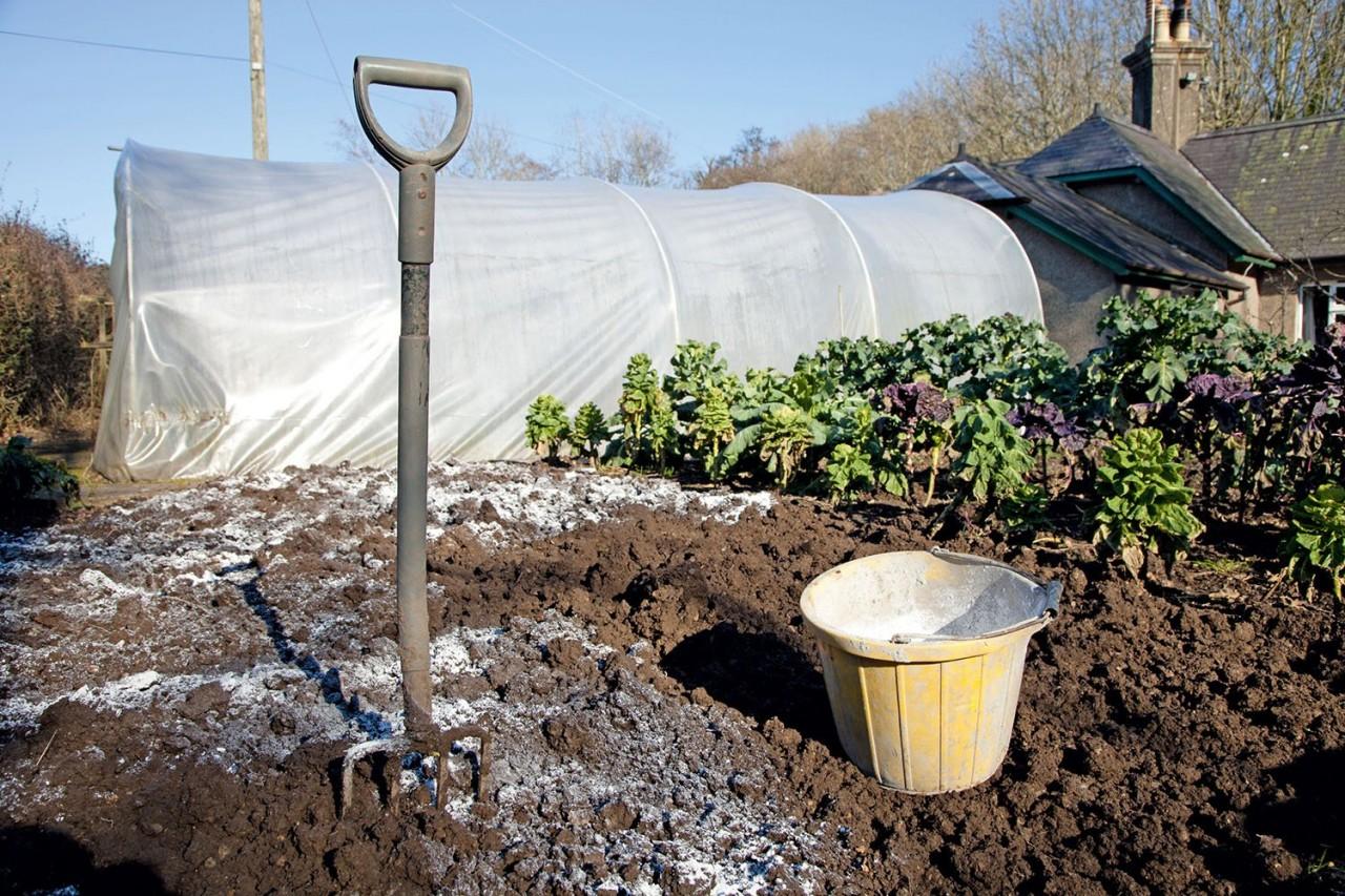 сульфат магния для растений