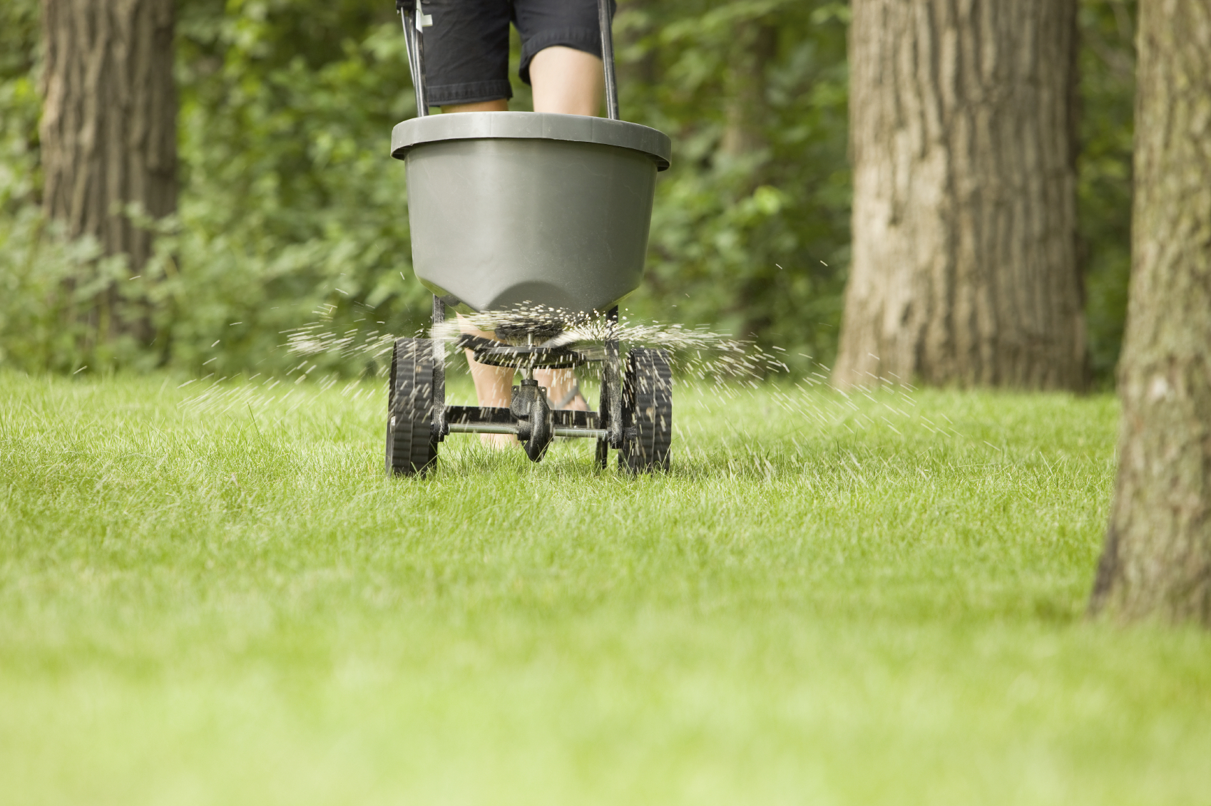 разбрасыватели твердых органических удобрений