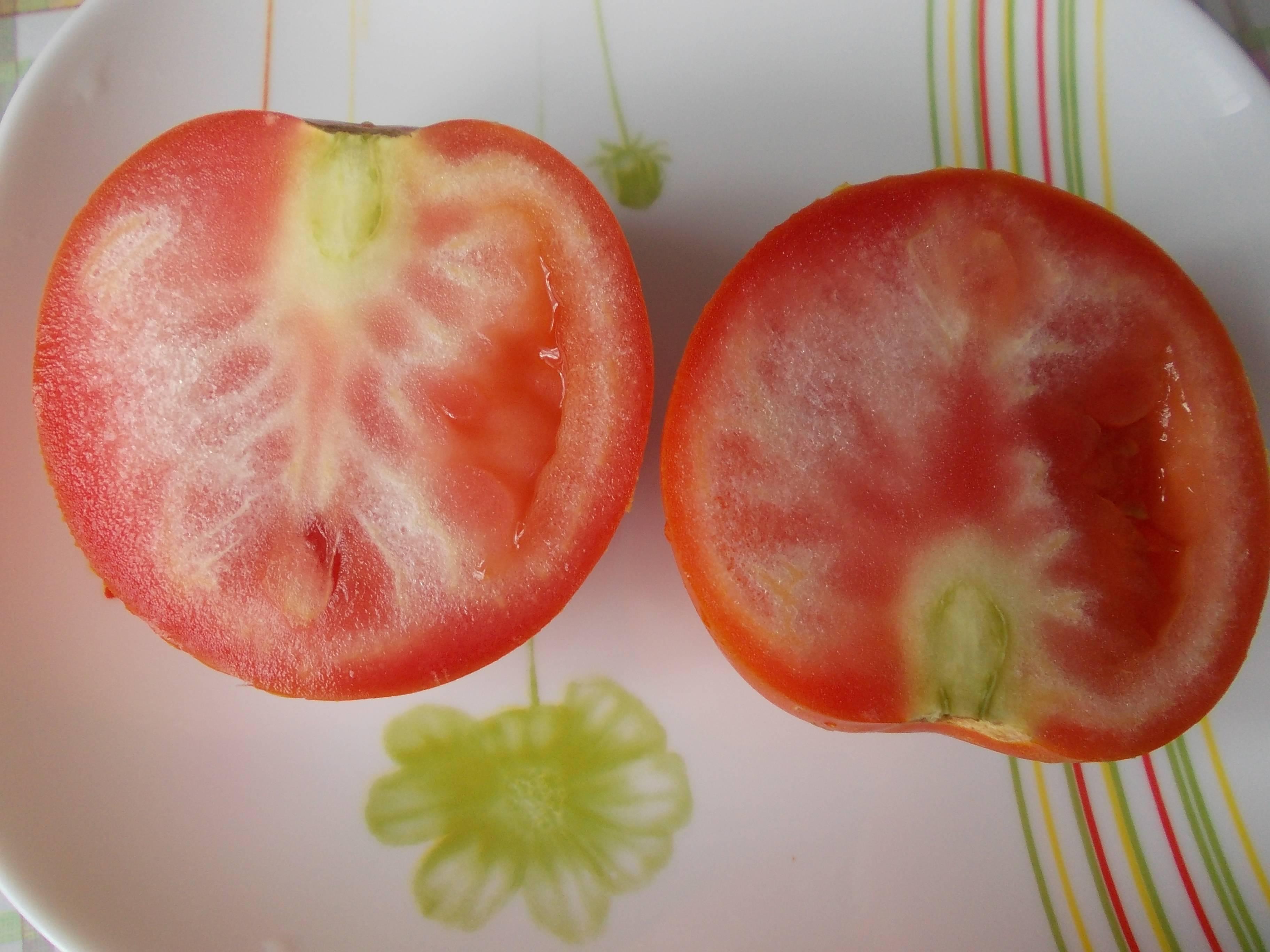 чем подкормить помидоры в июле в теплице