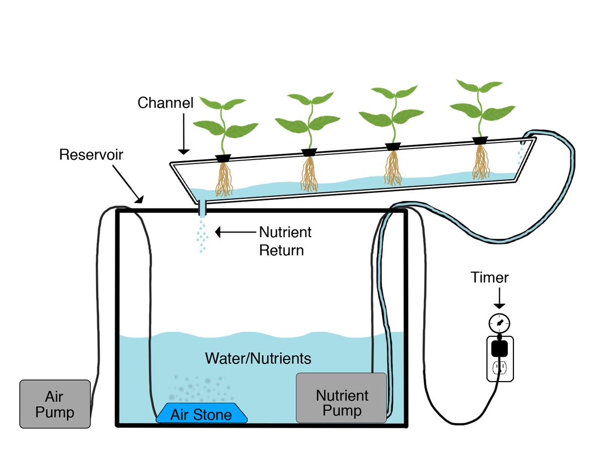 удобрения для гидропоники зелень