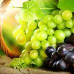 зола как удобрение для винограда