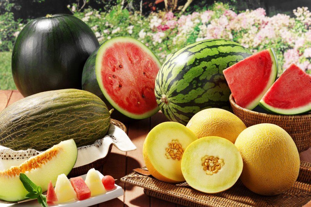 чем подкормить арбузы для роста плодов