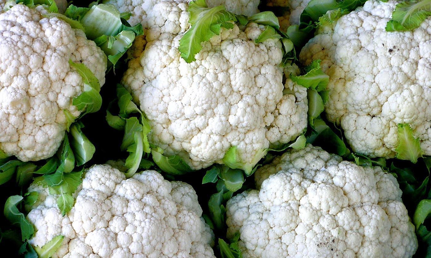 чем подкормить капусту в августе для формирования кочана