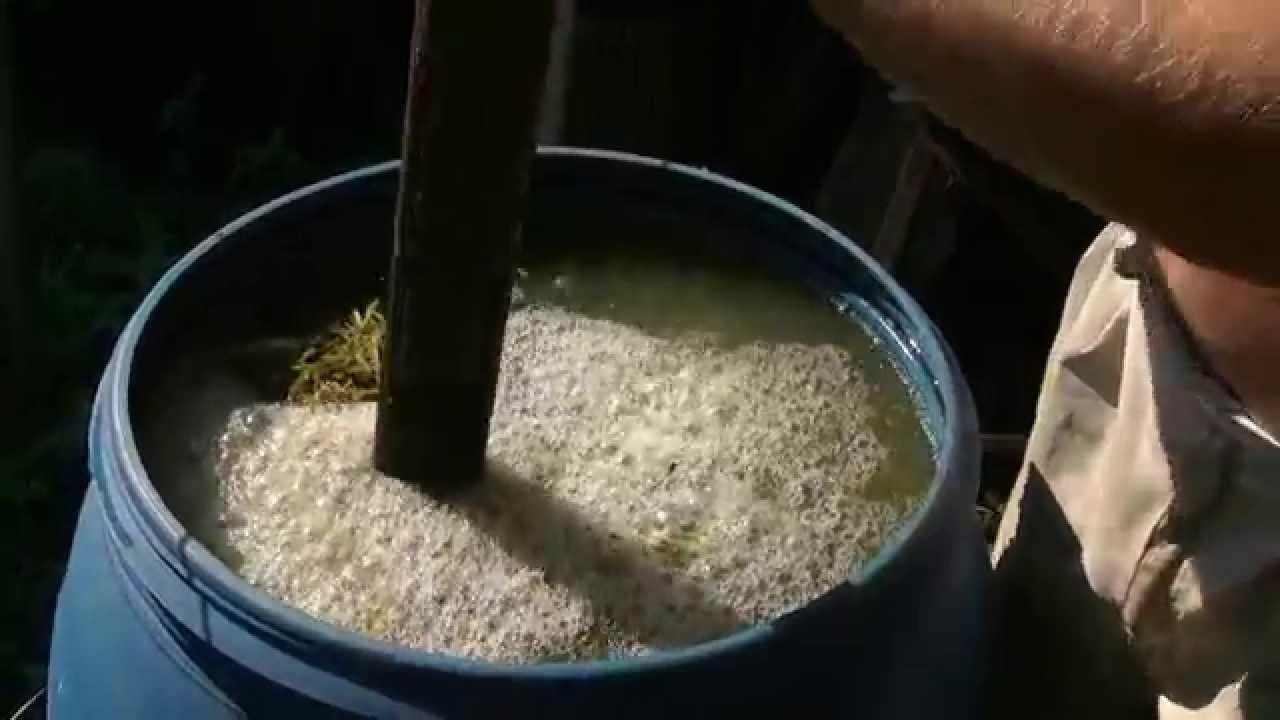 скошенная трава как удобрение
