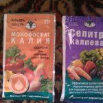 удобрения для аквариумных растений своими руками в домашних условиях