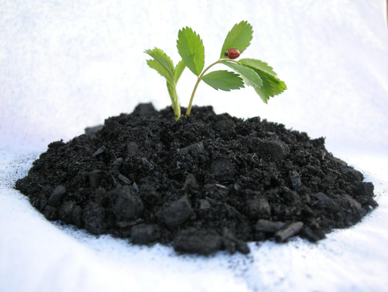 биогров удобрение инструкция