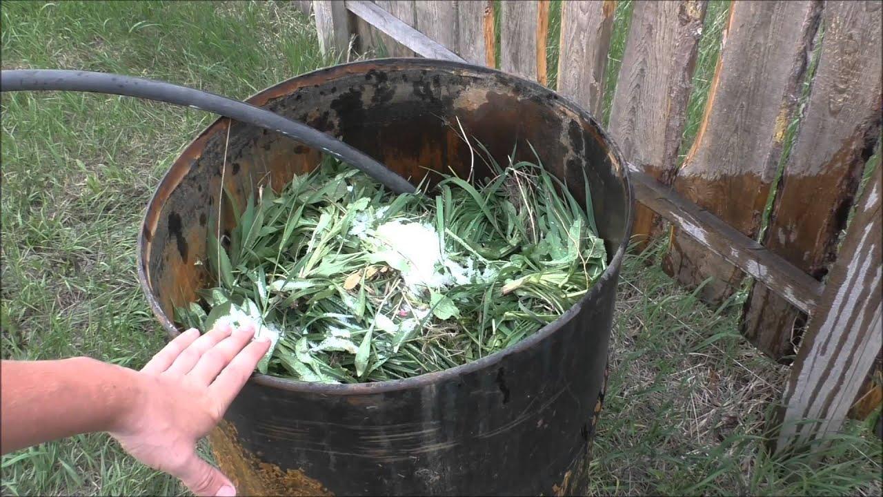 зеленое удобрение из крапивы для огурцов