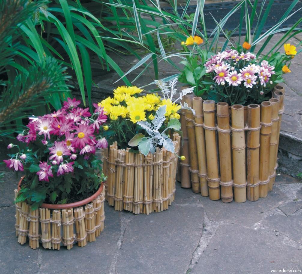 бамбук лаки