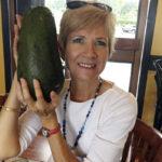 посадить косточку авокадо