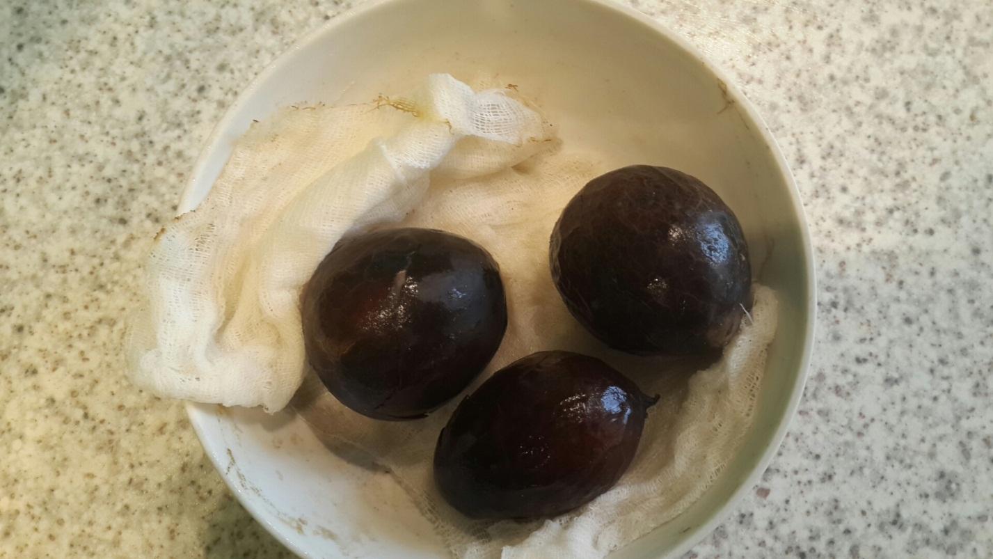 авокадо в домашних условиях выращивание