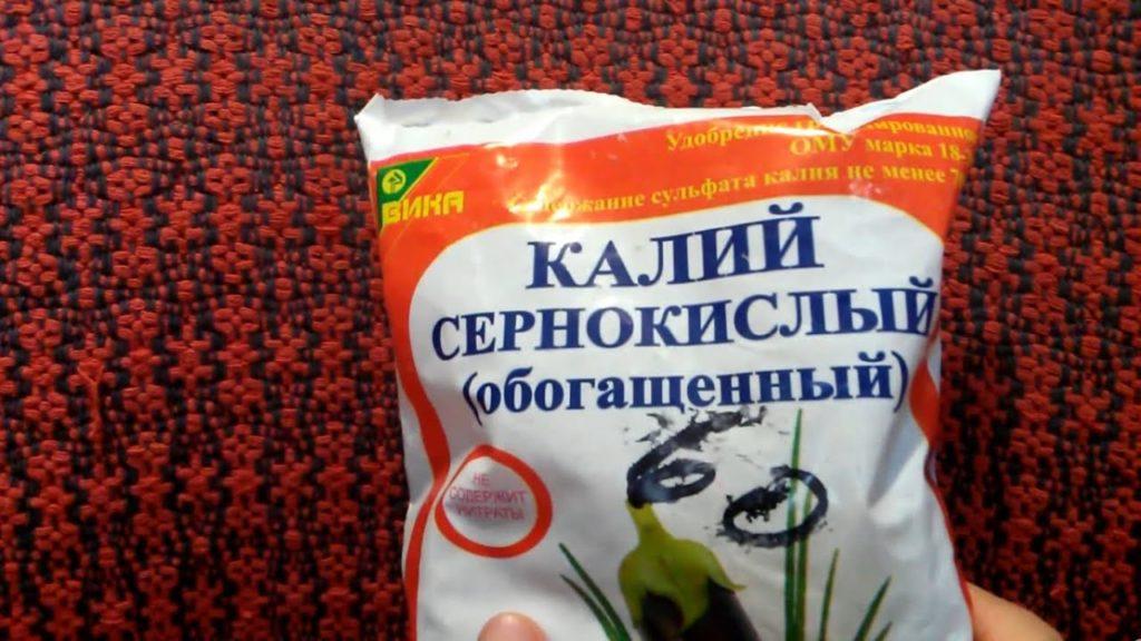 чем подкормить гортензию во время цветения